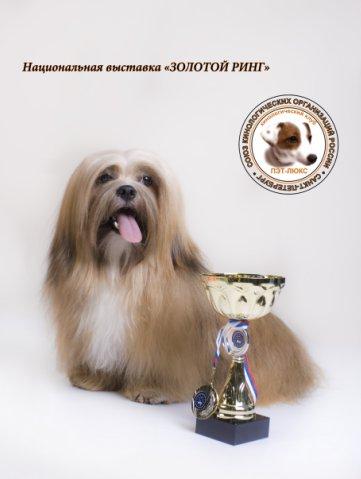 Олд Томарктус Бакси фо Аморе Пацифик