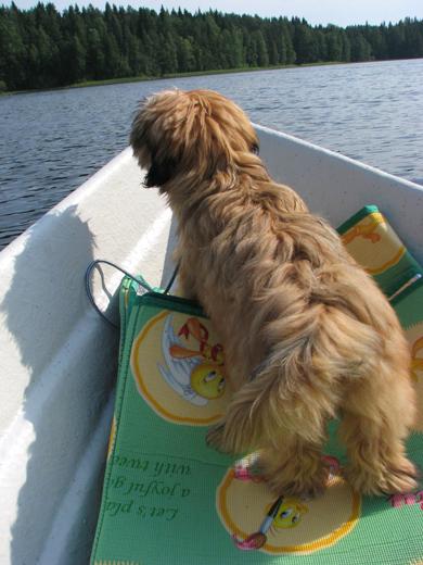 Ника отважный мореплаватель