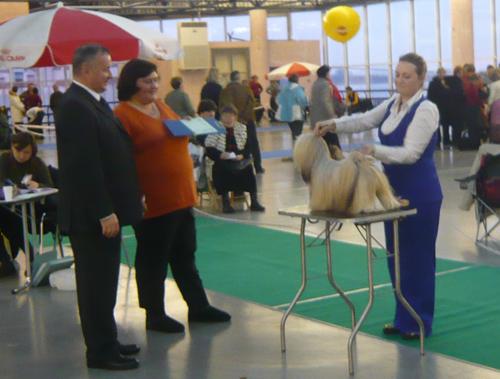 """Международная выставка собак CACIB FCI """"Невский победитель"""""""