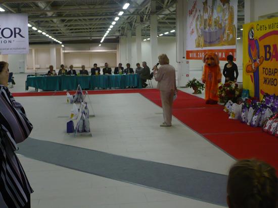 """Международная выставка """"Балтийский триумф - 2010"""""""