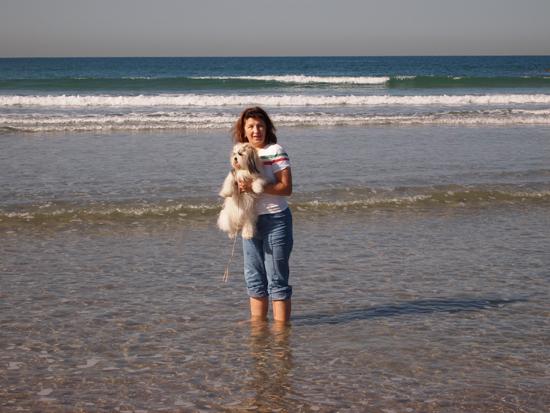 Средиземное море декабрь 2010