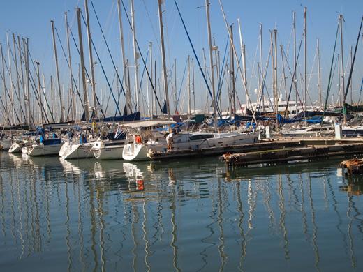 яхты, катера, парусники