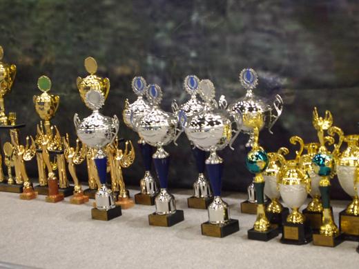 кубки победителей