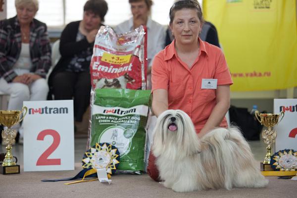 Лучшая собака выставки - Ева BIS-2