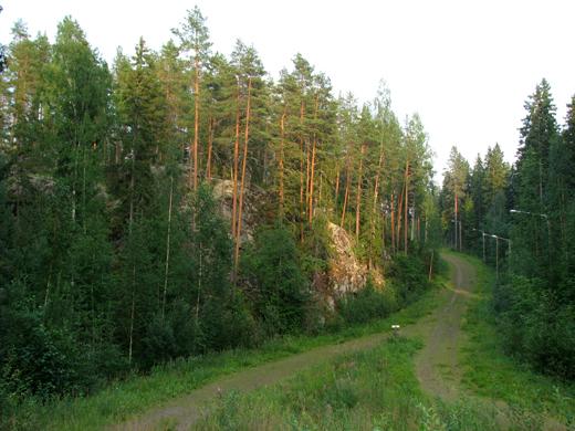 Наша дорога для прогулок