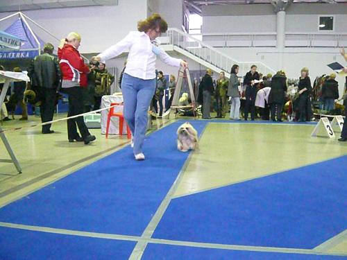 """Ярмарка-выставка """"Зоосфера-2009"""""""