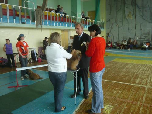 Псковский сувенир - 2009