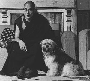 Лхаса Апсо Тибет