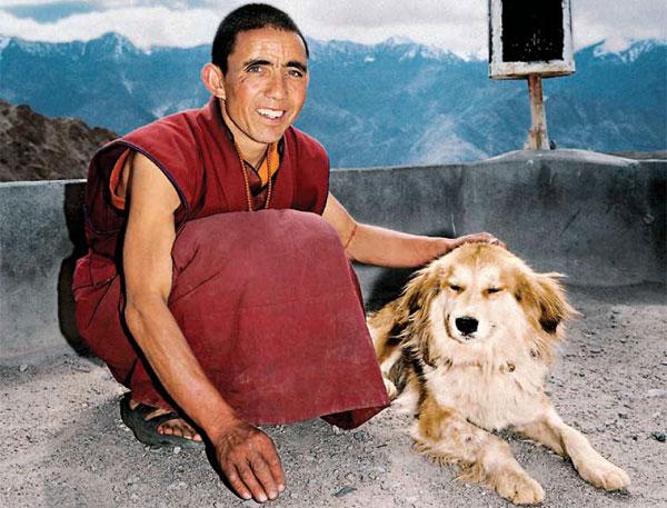Тибетский монах и собака
